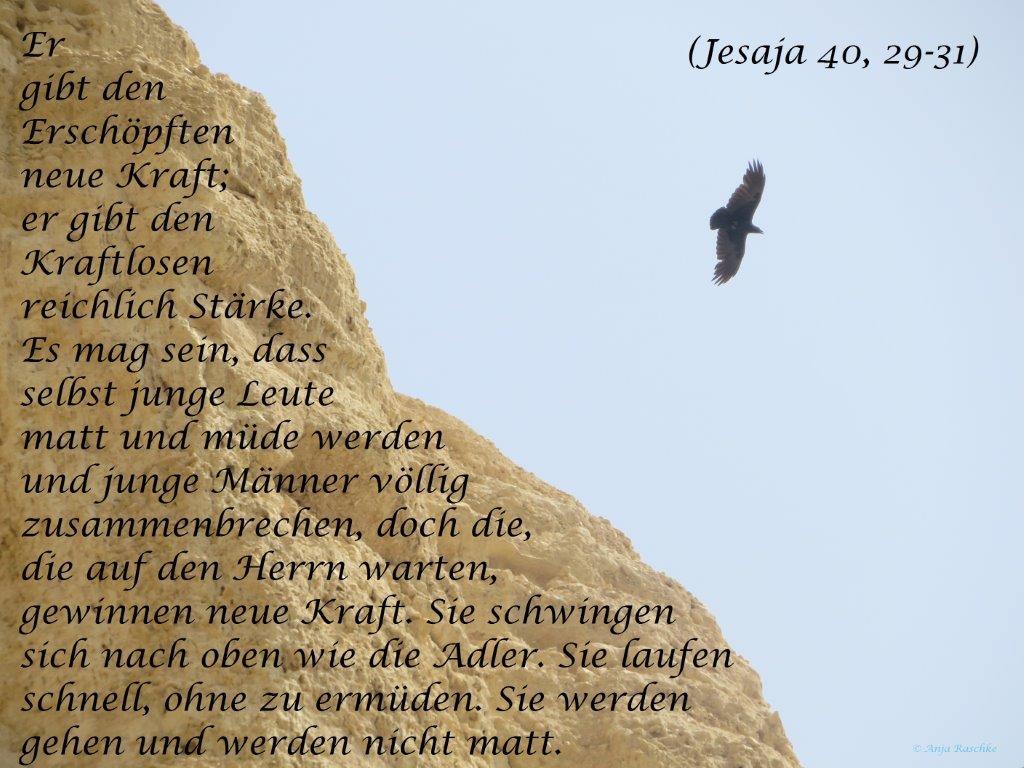 Jesaja 40,29-31